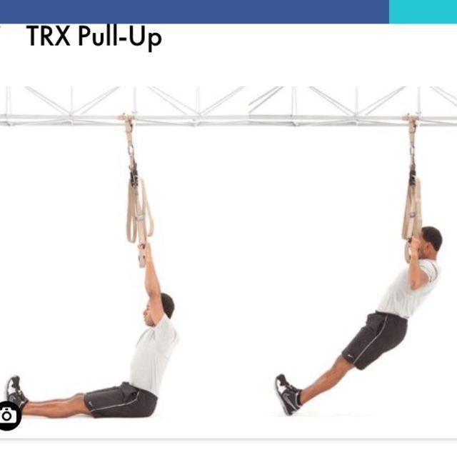TRX Pull Up